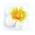0184-glialberelli5-bombonieraperfetta